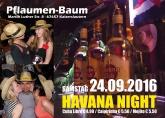 Pflaumenbaum Havanna Night